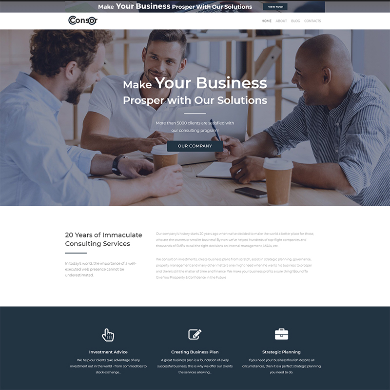 Consor lite - Business Consulting Elementor WordPress Theme
